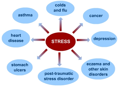 What is 'Stress'? | S-cool, the revision website